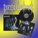DESULTORY - counting our scars LP