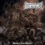 PURTENANCE - awaken from slumber LP