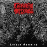CARNAL TOMB - rotten remains LP