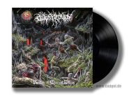 OUTER HEAVEN - realms of eternal decay LP