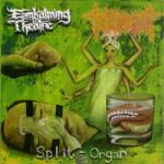 EMBALMING THEATRE / TORTURE INCIDENT - split CD