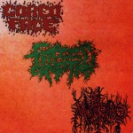 V.A. AND GRAVES GIVE UP THEIR DEAD - 3way split CD