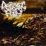 DECAYING FORM - chronicles of decimation CD