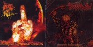 DECOMPOSED / CREATED TO KILL - split CD