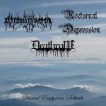 V.A. DISMAL EMPYREAN SOLITUDE - 3way split CD