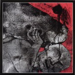 V.A. TRIBUTE TO ROT - pushing the stone CD