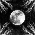 CORPUS CHRISTII - pale moon CD