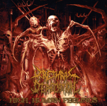 URETHRAL DEFECATION - high human feelings CD