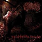 SUICIDAL CAUSTICITY - the spiritual decline CD
