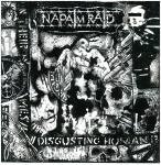 NAPALM RAID - 2010-2015 CD