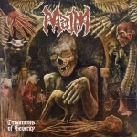 MAIM - ornament of severity CD