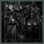 ENISUM - seasons of desolation DgiCD