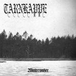 TARNKAPPE - winterwaker DigiCD
