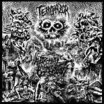 TERRORAZOR - abysmal hymns of disgust CD