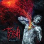 TAIGA - cosmos CD