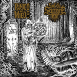 PÁNICO AL MIEDO / SOL DE SANGRE - split MCD