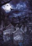 CHAOS MAG - nr. 15 + true black metal memory Zine