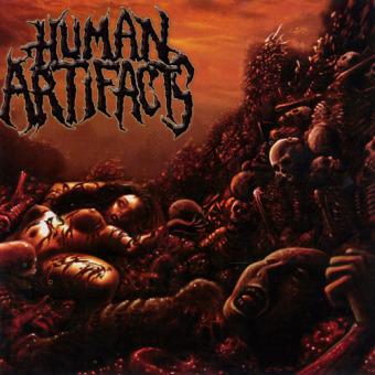 HUMAN ARTIFACTS - the principles of sickness CD