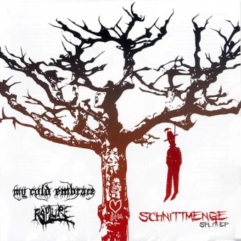 MY COLD EMBRACE / RAPTURE - split MCD