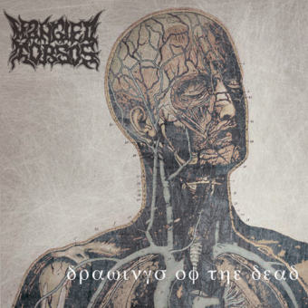 MANGLED TORSOS - drawings of the dead CD