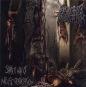 PERVERSE MOLESTATION - sadistic way of intense perve CD