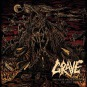 GRAVE - endless procession of souls CD